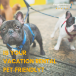 pet friendly vacation rental