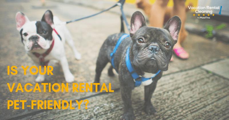 pet friendly vacation rental