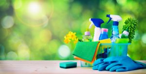 What do professional house cleaners use